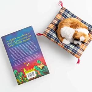 Children's Literature & Fiction (Books)