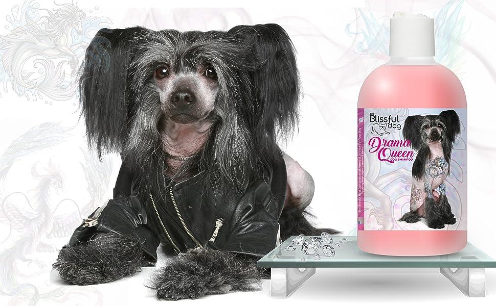 luxury  Chinese Crested dog shampoo, luxury dog shampoo,  Chinese Crested,  Chinese Crested grooming
