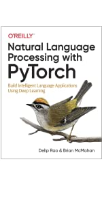 Natural Language Processing, pytorch