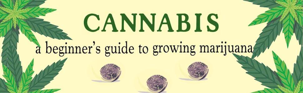 pot, marijuana, cannabis, grow pot, growing pot, growing cannabis, grow cannabis, grow marijuana