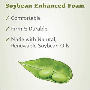 soybean foam