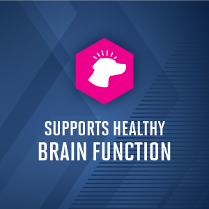 supports healthy brain function
