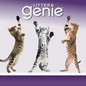 Litter Genie cat disposable system Daddy no odor smell refill pail scoop Jackson Galaxy