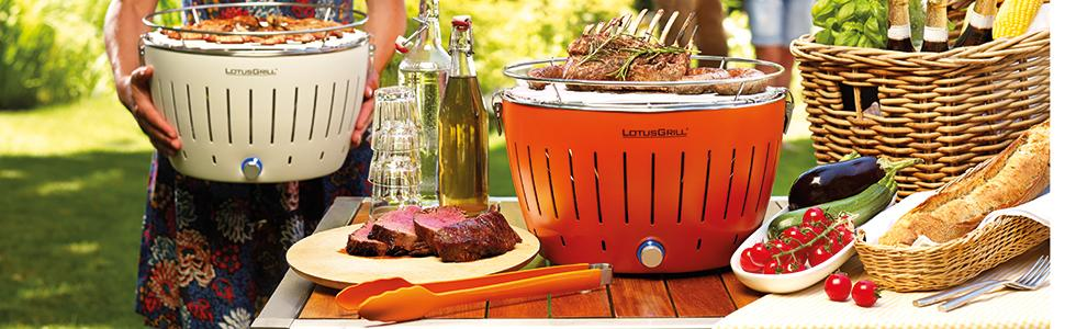Set da gourmet con barbecue mix di spezie Hallinger Pure FIsh e custodia per il trasporto Lotus Grill