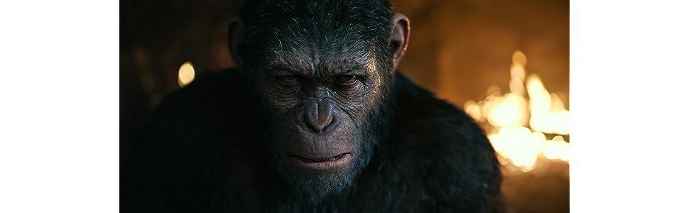 The War Il Pianeta Delle Scimmie 3d 2 Blu Ray War For The Planet