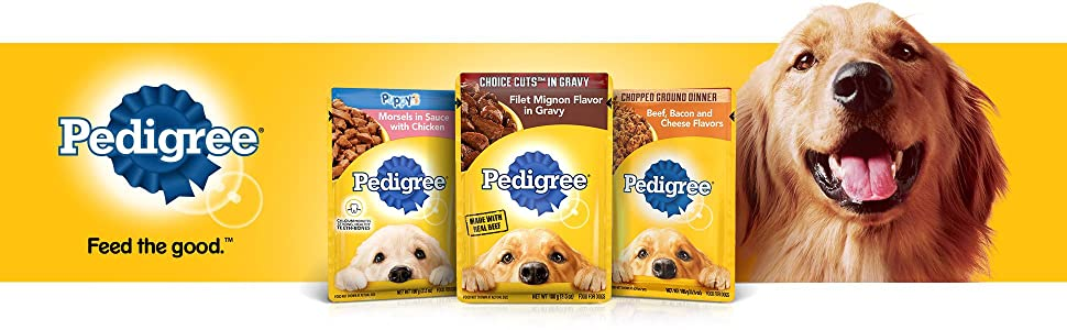 Pedigree Wet Dog Food, Feed the Good, Gravy, Dog, Food, Cuts, Fillets, Tender, Juicy, Moist, Soft