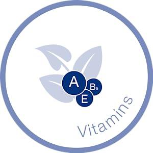 Vitamins A, E, B5 Icon