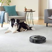 El mejor robot aspirador para hogares con mascotas*