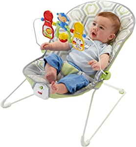 80cd376a9be4e Amazon.com   Fisher-Price Baby s Bouncer