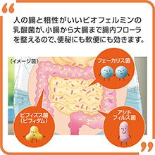 人の腸と相性がいいビオフェルミンの乳酸菌/省庁から大腸まで腸内フローラを整える/便秘にも軟便にも効く