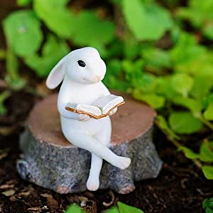 Top Collection 4390 Bunny Reading on Tree Stump