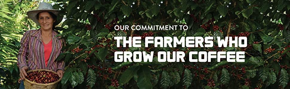 farming, growing coffee, san francisco bay coffee,