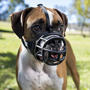 dog muzzle, muzzles for dogs, muzzles for dog