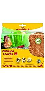 sera Catappa Leaves M