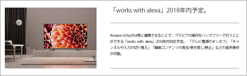 works with alexa2018年内対応予定