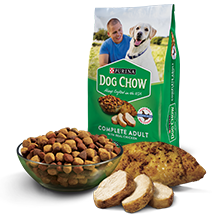 Bag of Purina Dog Chow dry dog food with a bowl of kibble and sliced chicken