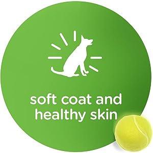 Dog Food Tray, Dog Bowl, Dog Food Plate, Canned Dog Food, Dog Food Can, Coat Health, Skin Health