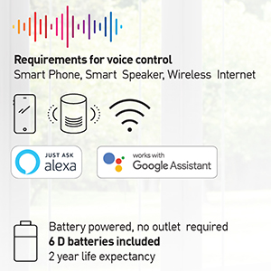 requirements for voice control