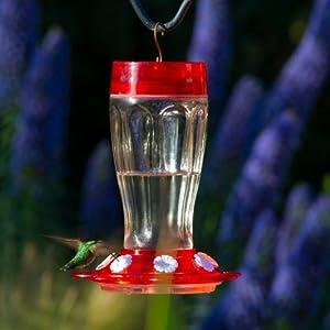 more birds hummingbird modern feeder mason