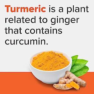 Turmeric Giner
