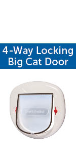 big cat door for small and large cats and dogs interior exterior pet door inexpensive durable safe