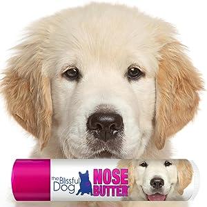 Amazon Com The Blissful Dog Golden Retriever Nose Butter 4 Ounce