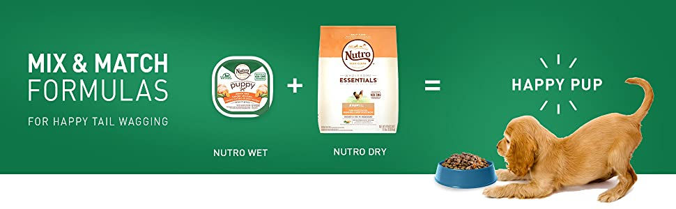Nutro Puppy; Mix and Match Formulas; Wet Food; Dry Food; Dog Food; Happy Puppy