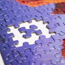 jigsaw puzzle, interlocking, springbok