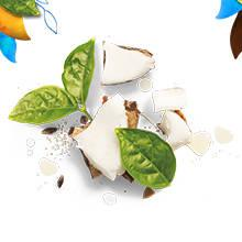 Herbal Essences Coconut Milk Hydrate Shampoo Conditioner Collection