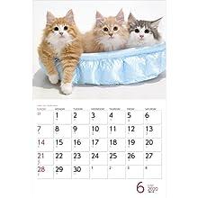 カレンダー2020 Cats