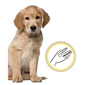 ConairPro PGRDPICC Dog Pet-It Curry Comb Brush