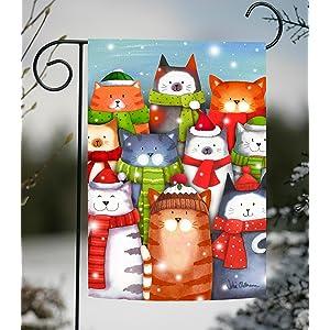 cat;kitty;winter;snow;snowflake;scarf;hat;animal;pet;kitten;sing;singing;christmas;carol;fun