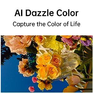 Dazzle camera