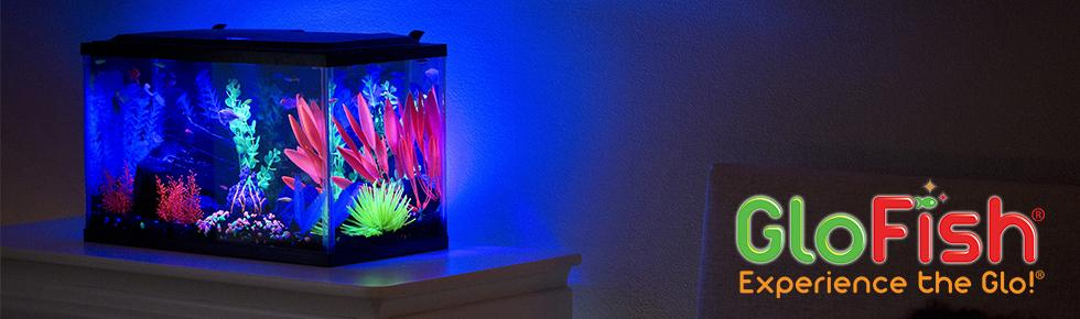 d3b3a18b 067a 4735 a633 ae9dad63cb78._SR970300_ amazon com glofish cycle light pet supplies  at creativeand.co