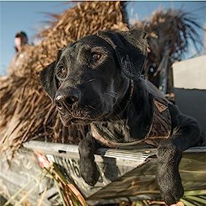 da9068b2bfd42 Browning 3mm Neoprene Dog Vest Dog - TiendaMIA.com