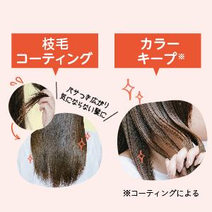 枝毛 コーティング 退色防止 カラーキープ