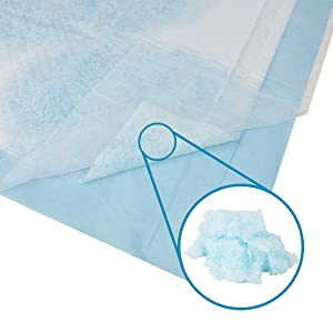 Absorbent Core