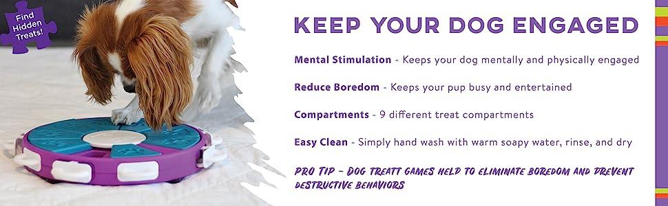 Pet Supplies : Nina Ottosson Dog Twister Advanced Dog