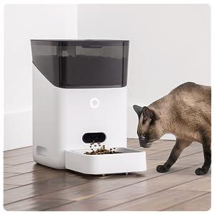 Petnet SmartFeeder Automatic Cat Feeder