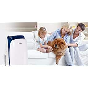 portable air conditioner LG, portable ac units for rooms, free standing air conditioners