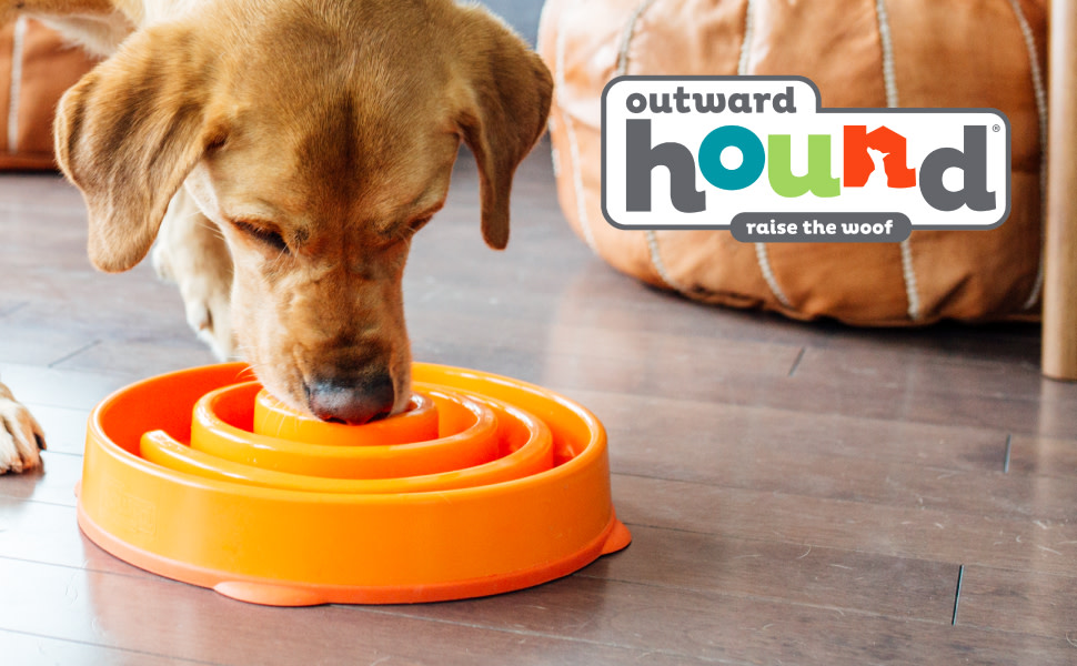 A dog sniff and hunts for food in its Outward Hound Fun Feeder Slo Bowl.