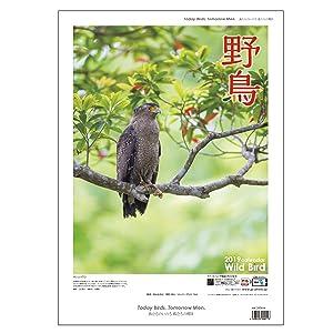2019野鳥カレンダー