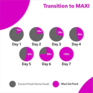 TRANSITION TO MAXI