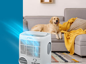 Protect Your AC
