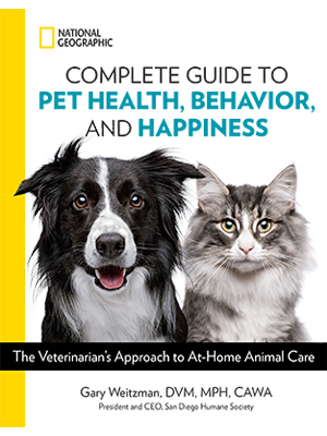 Pet Health, Dogs, Cats,Pets