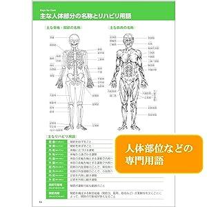 【医療系用語を図解】