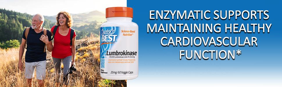 Lumbrokinase fibrinolytic enzymes cardiovascular system