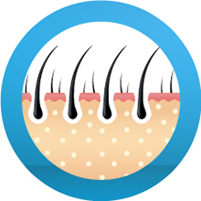 hair oil for hair growth,tel,hair growth hair oil,hair care,hair care hair oil,hair fall conditioner