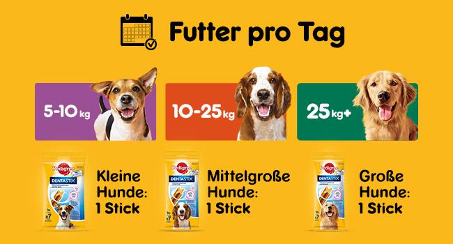 Pedigree Dentastix Fresh Hundeleckerli Für Große Hunde Kausnack Gegen Zahnsteinbildung Für Gesunde Zähne Und Einen Frischen Atem 1er Pack 1 X 4