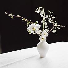 seasonal flowers, planting flowers, gardening by region, gardening by season, seasonal blooms
